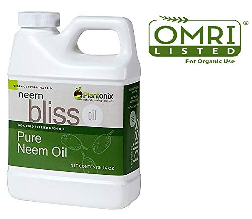 100% Pure Cold Pressed Neem Seed Oil